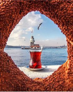 Book Istanbul Tours Directly From a Local Tour Guide. All Tour Guides are Licensed and Professional. Find Your Istanbul Tour Guide Istanbul Tours, Istanbul City, Istanbul Travel, Travel Pictures, Travel Photos, Wonderful Places, Beautiful Places, Turkey Photos, Turkey Travel