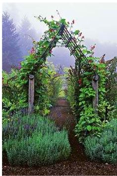 Garden Arbors and Arches to Give an Entry to Your Garden Setting Vegetable garden arbor. What a way to enter the garden. See more ideas thegardeningcook. The post Garden Arbors and Arches to Give an Entry to Your Garden Setting appeared first on Garten. Garden Arbor, Garden Trellis, Garden Paths, Garden Landscaping, Bean Trellis, Landscaping Ideas, Garden Entrance, Garden Arches, Potager Garden