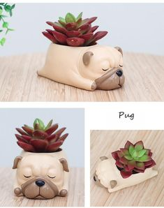 Comes as one piece. Each planter averages about x x inches in size. Refer to product image with sizing listed in cm. Product delivered in weeks. Cement Pots, Ceramic Planters, Planter Pots, House Plants Decor, Plant Decor, Plantas Indoor, Cute Clay, Ceramic Animals, Sculpture Clay