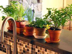how to grow an herb garden in mason jars #how #to #grow #an #herb #garden #in #mason #jars