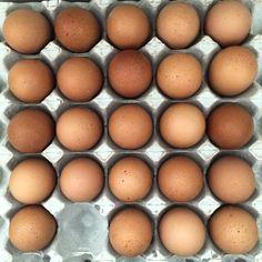 Beautiful Brown Eggs