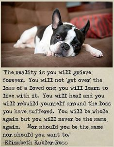 I think this is true whether it refers to pets or people they both can change our lives.