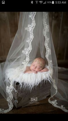 Veil above crib for a canopy (and another use for the veil) - Baby fotoshooting - Baby Foto Newborn, Newborn Baby Photos, Baby Girl Photos, Baby Poses, Newborn Poses, Newborn Baby Photography, Newborn Pictures, Newborn Session, Baby Girl Newborn