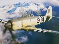 Dazzling Vintage Aircraft: The Major Attractions Of Air Festivals Ww2 Aircraft, Military Aircraft, Hawker Tempest, Photo Avion, Royal Australian Air Force, Hawker Hurricane, Air Festival, Korean War, City Photography