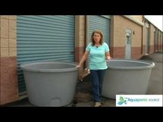 How To Select Your Fish Tank For Aquaponics - YouTube