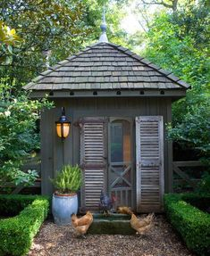I want a chicken coop...and a yard to put it in!