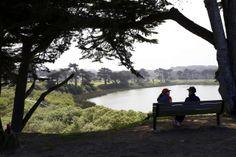 Stress less near #trees! #TREEmendous #TreesMatter #TreeBenefits (via www.sfgate.com)