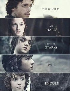 Game of Thrones-Starks Will Endure