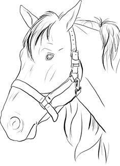 horse head coloring pages to print - Google Search