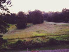 #purple #morning #landscape #photography #iphone