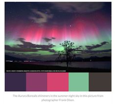 The Aurora Borealis shimmers in the summer night sky in this picture from photographer Frank Olsen. Color Schemes Colour Palettes, Green Colour Palette, Room Color Schemes, Room Colors, Color Combos, Paint Colors, Quinceanera Themes, Design Palette, Colour Board