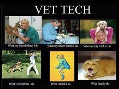 Vet Tech Interpretations - 6