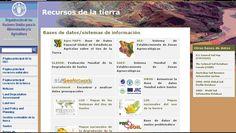 Recursos de la tierra es la página de la Organización de las Naciones Unidas para la Alimentación y la Agricultura. Contiene información y diversas bases de datos sobre el uso de la tierra, localizaciones geoespaciales, zonas agroecológicas, suelos problemáticos, etc. Base, United Nations, Agriculture, Flooring, Earth
