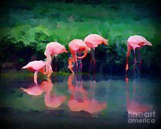 Pink Flamingos Painting  - Pink Flamingos Fine Art Print