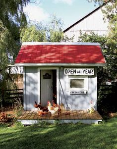 Raising chickens has gained a lot of popularity over the past few years. If you take proper care of your chickens, you will have fresh eggs regularly. You need a chicken coop to raise chickens properly. Use these chicken coop essentials so that you can. Backyard Chicken Coops, Chicken Coop Plans, Building A Chicken Coop, Diy Chicken Coop, Chickens Backyard, Small Chicken Coops, Chicken Feeders, Chicken Tractors, Red Chicken