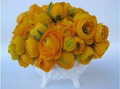 is this what you mean by pave of yellow ranunculus?