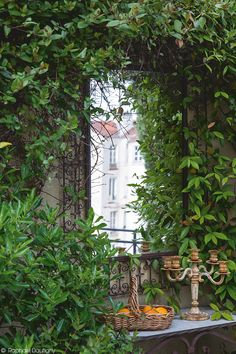 My inner landscape Garden Oasis, Garden Art, Garden Design, Home And Garden, Outdoor Mirrors Garden, Garden Mirrors, Pinterest Garden, Fresco, Cool Mirrors