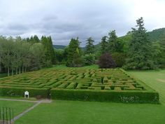 Traquair House maze where Fiona and Alex take their picnic and Fiona reveals a secret she hasn't spoken of in a decade...