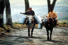 Reminds my of my vavo. Delivering milk, Sao Miguel Island - Azores by azorean, via Flickr