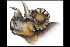Illustration of the Wendiceratops.