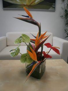 Anthurium and bird of paradise centerpiece.