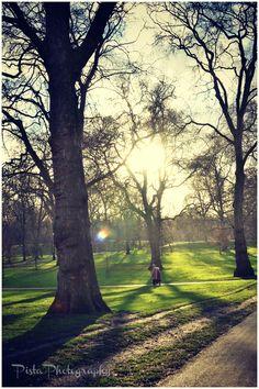 Sun breaking through a winter's day in Green Park, London