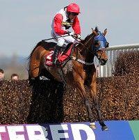 Horse Racing Tips for Monday 4 February 2013 Horse Racing Tips, Irish, February, Horses, Animals, Horse Racing, Animales, Irish Language, Animaux