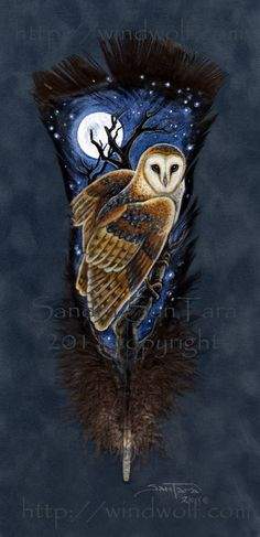 Night Guardian Feather Print of the original by Sandra SanTara. Beautiful print of the original painted feather featuring a Barn Owl Owl Feather, Feather Crafts, Bird Feathers, Painted Feathers, Native Art, Native American Art, Nocturne, Turkey Feathers, Feather Painting