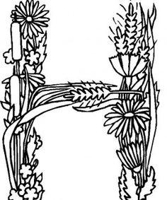 Flower Alphabet 8