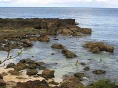 sharks cove on the north shore, oahu...wonderful place to snorkel...this photo doesn't due it any justice