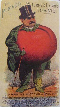 orange seed packet vintage - Google Search