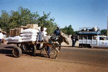 A common sight when I lived in Mali.