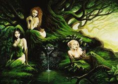 the Hamadryades - each of nymphs presided over a particularly type of tree: Karya (nut), Kraneia (cherry), Morea (mulberry), Ptelea (elm), Syke (fig), Balanis (holm), Aigeiros (black poplar) and Ampelos (vine, including the wild grape)