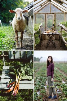 Daily life in the Farm - http://www.hgtvdecor.net/decoration-ideas/daily-life-in-the-farm-3.html