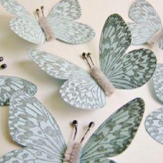 Butterflies <3