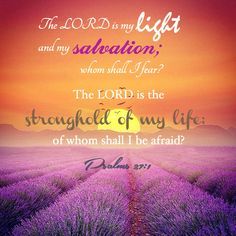 Psalm 27:1 Son Of God, You Are The Father, Postive Words, Shadow Of The Almighty, Psalm 27, Under The Shadow, Lord Is My Strength, Verses For Cards, My Salvation