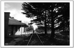 Estación M. Miró