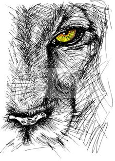Illustration about Hand drawn Sketch of a lion looking intently at the camera. Illustration of majestic, hunter, hand - 30245286 Animal Sketches, Animal Drawings, Pencil Drawings, Art Drawings, Drawing Animals, Lion Sketch, Drawing Sketches, Art Sketches, Sketching