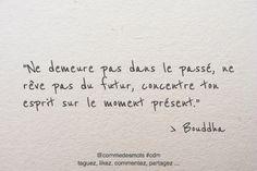 """""""Ne demeure pas dans le passé, ne rêve pas du futur, concentre ton esprit sur le moment présent."""" #citation #Bouddha #penseepositive #citationdujour #icietmaintenant"""