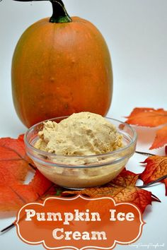 Now that Fall is fast approaching, I thought it would be appropriate to make some sort of creamy pumpkin ice cream recipe. I am such a sucker for pretty much anything pumpkin, so harvest recipes have been in full swing. So far, I have found some great gluten free pumpkin desserts, and cannot wait to share them with you.
