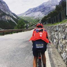 Vincenzo Nibali - Bahrain Merida Vincenzo Nibali, Merida, Golf Bags, Lovers, Backpacks, Board, Sports, Cycling, Hs Sports