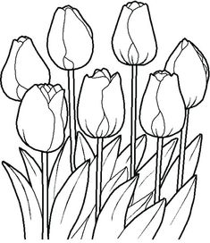 34 Best garden flowers coloring pages images in 2019