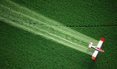 """""""Monsanto's Glyphosate Pesticide: Cancer Deaths Have Doubled in Argentina's GMO Agriculture"""" via Global Research http://www.globalresearch.ca/monsantos-glyphosate-pesticide-cancer-deaths-have-doubled-in-argentinas-gmo-agriculture/5414791"""