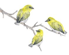 Watercolor bird painting, bird art, yellow birds, nature, abstract, finches, feathers, wildlife, yellow - 10X8 via Etsy