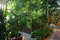 Gardenia - trooppinen puutarha, Viikki
