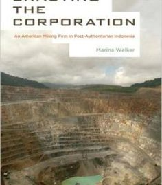 Enacting The Corporation: An American Mining Firm In Post-Authoritarian Indonesia PDF