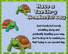 Cute turtle card to wish someone a wonderful day. Free online Turtle-y Wonderful Day ecards on World Turtle Day® World Turtle Day, Cute Hug, Romantic Messages, Cute Turtles, Feeling Special, Name Cards, Sign Quotes, Say Hi, Card Sizes