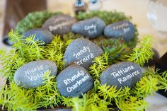 love the rock idea.. maybe i could put these in sand instead of cards. but how to indicate dinner choice?