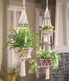 Macrama plant holders from Collections etc