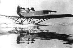 The Hansa-Brandenburg W.29 was a German monoplane fighter floatplane which served in the closing months of World War I